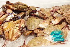 Seafood_City_0306